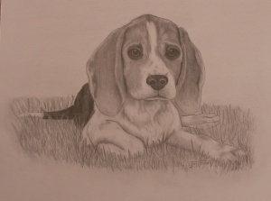 buffy-beagle
