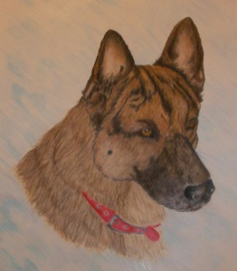 german-shepherd-cp1